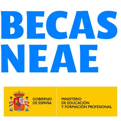 Becas NEAE